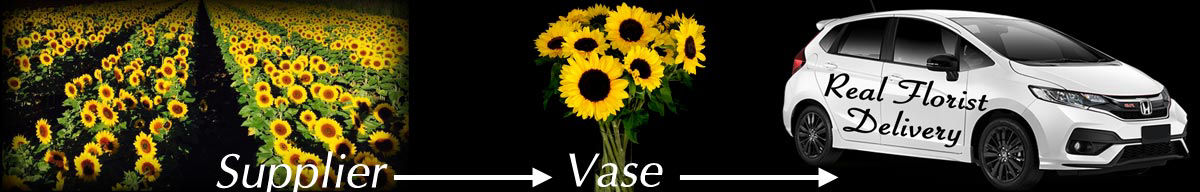 Sunflowers Supplier to Vase